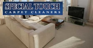 Special Touch Carpet Cleaning Cuyahoga Falls Ohio And