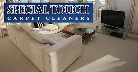 Special Touch Carpet Cleaners