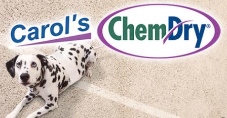 Carol's Chem Dry – Ravenna, Ohio