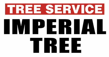 Imperial Tree Inc.