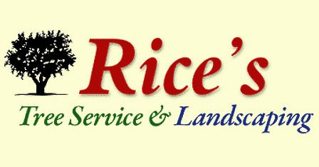 Rice's Tree Service & Landscaping – North Royalton, Ohio