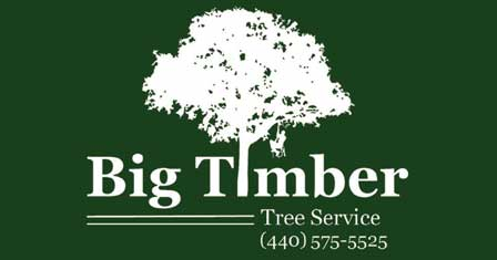 Big Timber Tree Service