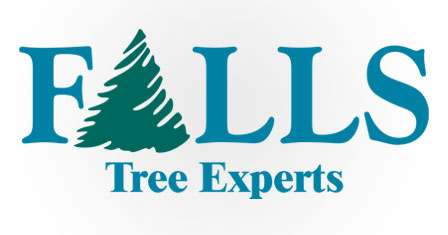 Falls Tree Experts – Richmond Heights, Ohio