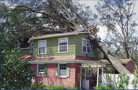Falls Tree Experts - Aurora, Ohio - Tree Removal, Tree Trimming, Tree Pruning, Stump Removal, Cabling and More