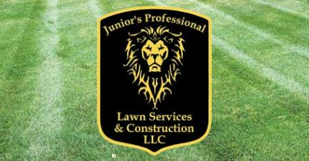 Junior's Professional Lawn Services and Construction