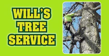 Will's Tree Service – Akron, Ohio